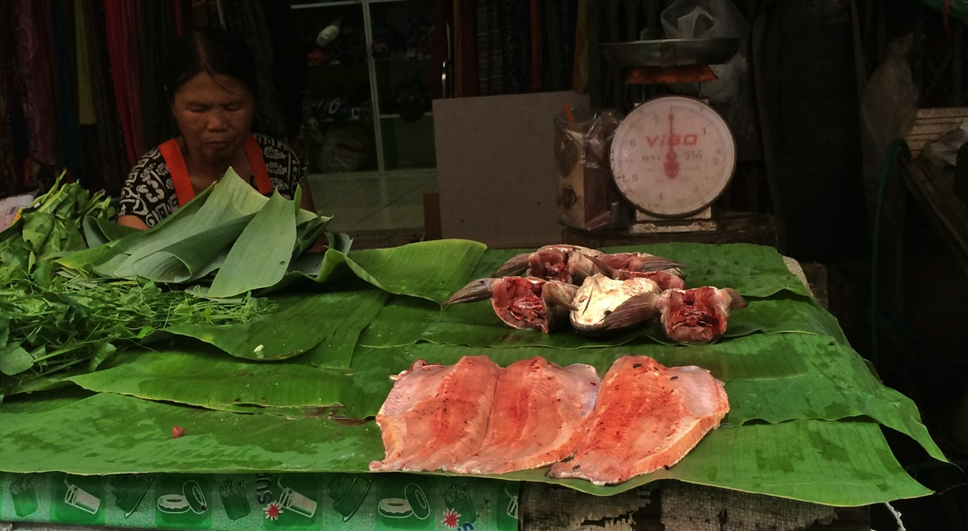 Chiang mai fish market