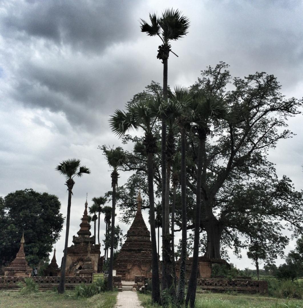 Pagoda under palm trees