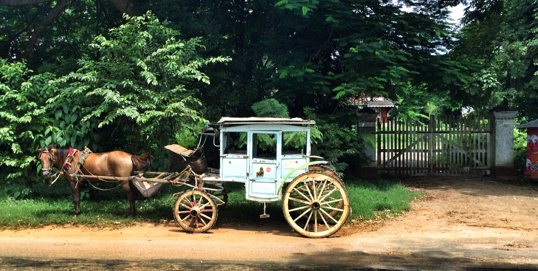 traditional horse cart in pyin oo lwin