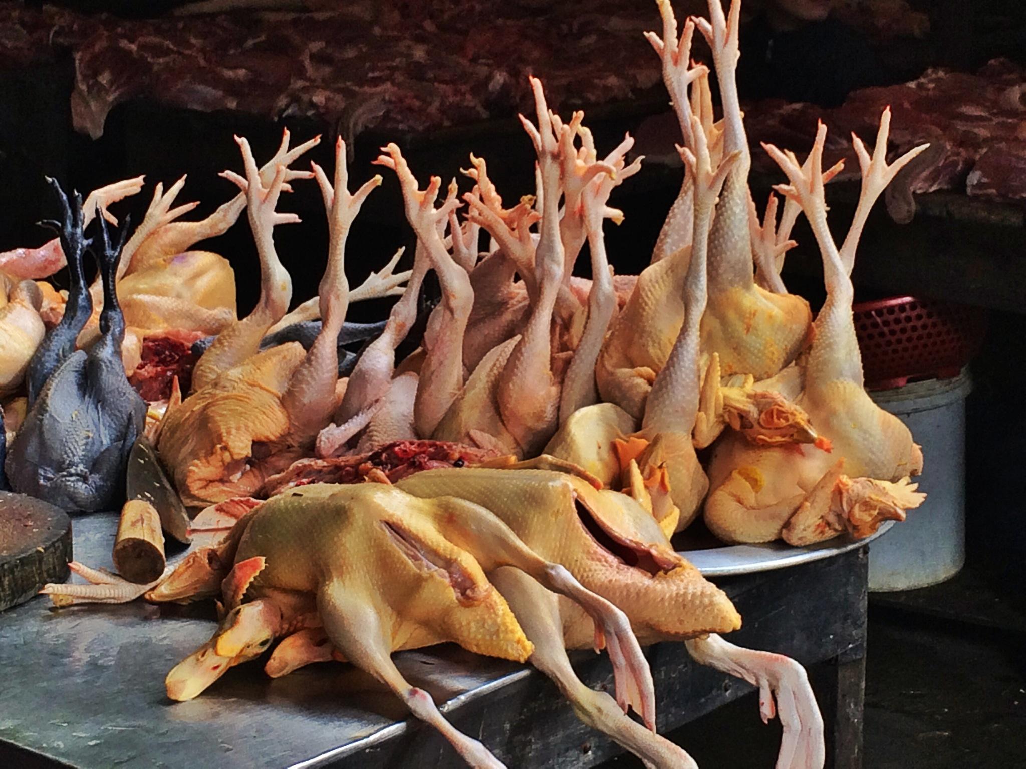 dead chicken on street market